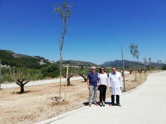 El nuevo parque público de Ador avanza sobre lo previsto