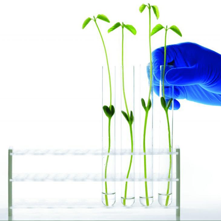 Vernieuwd ISO 14001certificaat voor milieubeheer