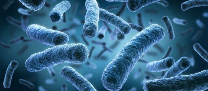 Artikel VMT.nl: biofilm verwijderen met enzymen