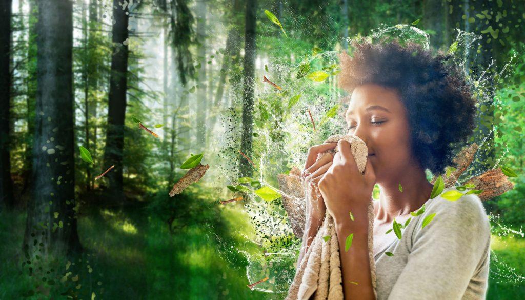 Découvrez notre portfolio de parfums pour assouplissants textiles
