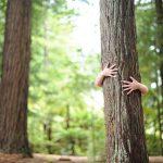Protéger & préserver notre environnement